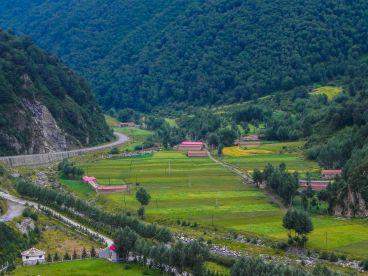 china-1209