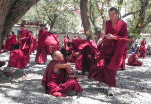 lhasa-0823