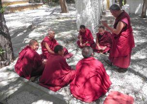 lhasa-0827