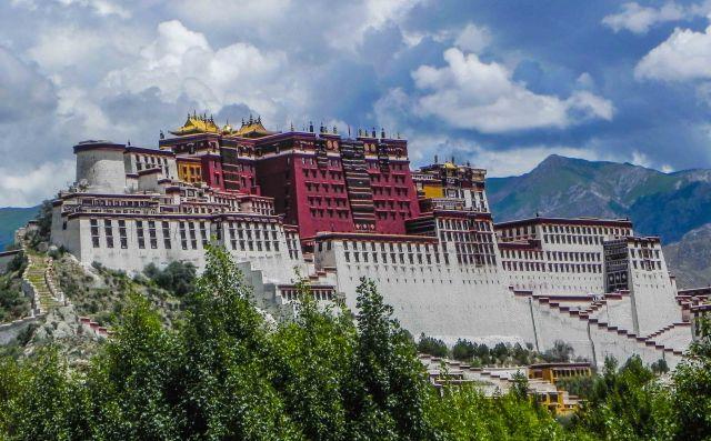 lhasa-1025