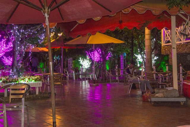Night in Tea Garden